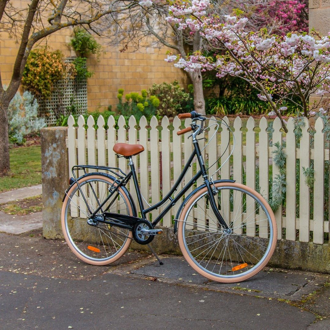 One of the beautiful bicycles from Dinki Bike Hire at Ross Tasmania.